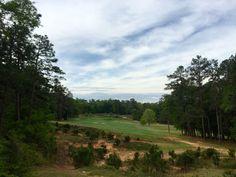Palmetto Golf Club