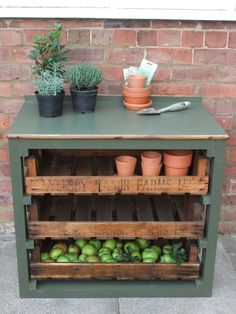Potting Bench/Fruit and Vegetable Storage - Wooden Top