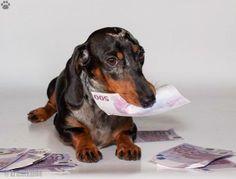 mmmmm I love money