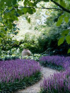 Teena Crawford's garden