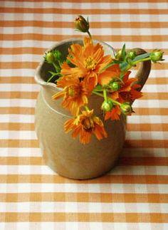 Orange + Antique pot