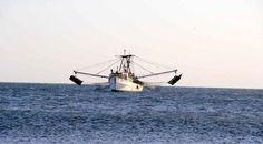 La pesca y acuacultura en Oaxaca sigue padeciendo un retroceso: Pescadores.