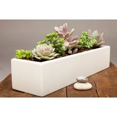 Low Rectangle Concrete Planter in White - 18"