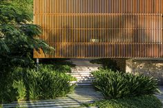 Delta House by Bernardes Arquitetura - Fence Ideas Tropical Architecture, Contemporary Architecture, Architecture Details, Landscape Architecture, Landscape Design, Contemporary Design, Garden Design, Modern Tropical, Tropical Houses