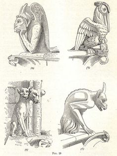Meaning of Gargoyles. What do Gargoyles symbolize. The definition of Gargoyles. Notre Dame Gargoyles, Gothic Gargoyles, Medieval Gothic, Victorian Gothic, Gothic Castle, Gargoyle Drawing, Gothic Drawings, Gothic Cathedral, Gothic Art