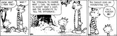 oh boy -- why is it this has the uncomfortable ring of truth?    Calvin and Hobbes on Gocomics.com
