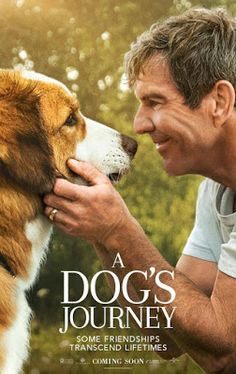 When does A Dog's Journey come out on DVD and Blu-ray? DVD and Blu-ray release date set for August Also A Dog's Journey Redbox, Netflix, and iTunes release dates. As a dog encounters numerous people on his journey through life he gains insight into h. Movies 2019, Sci Fi Movies, Movies To Watch, Good Movies, Funny Movies, Comedy Movies, Pikachu, Tv Series Online, Movies Online