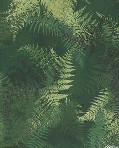 Enchanted Pines - Fern Shadows - Hunter Green. From eQuilter.com