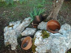 Looks like some pots on some rocks