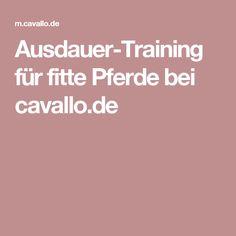 Ausdauer-Training für fitte Pferde bei cavallo.de