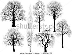 lime and linden tree tattoo | of trees silhouettes Shutterstock .eps vector - Collection of trees ...