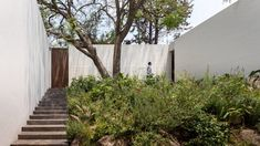 """White-brick walls enclose gardens and outdoor walkways of this house in Amatepec, Mexico, designed by Manuel Cervantes Estudio to create """"a game between light and shadows""""."""