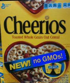 """""""Interesting blog post by Marion Nestle on the latest scuttlebutt over non-GMO Cheerios. Nestle says General Mills is complaining that sales are actually down. She said and now that they are GMO-free one professor says they are less nutritious - because they can't find GMO-free vitamins to fortify them with."""" -Slow Foods USA article pass on """"Food Politics » Some musings on non-GMO Cheerios to start the week"""""""