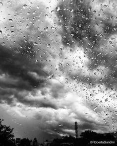'Cade la pioggia e tutto tace  lo vedi sento anch'io la pace  Cade la pioggia e questa pace  è solo acqua sporca e brace  c'è aria fredda intorno a noi  abbracciami se vuoi  questa mia stessa pioggia sporca  Dimmi a che serve restare  lontano in silenzio a guardare  la nostra passione che muore in un angolo  E dimmi a che serve sperare  se piove e non senti dolore  come questa mia pelle che muore  che cambia colore  che cambia l'odore'…