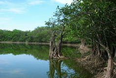Reserva Charco Verde, Isla de Ometepe, Nicaragua