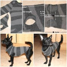 DIY Dog Sweater from a Used Sweater Sleeve 1