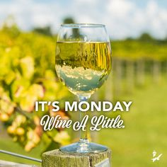 There is always time to wine at Duplin Winery!