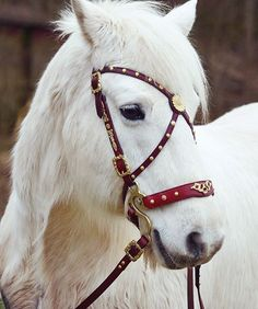 Norah Kohle - leather bridle with embellishments. Bronze and tan leather.