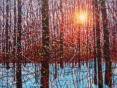 December Sun by Tim Packer