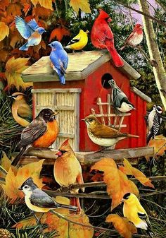 Fall Birds 1000 piece jigsaw puzzle by Greg and Company. Cobble Hill Puzzle Co fall and birds puzzle. Graffiti Kunst, Thanksgiving Games For Kids, Thanksgiving Books, Thanksgiving Parties, Image Deco, Banner, Bird Houses Diy, Welcome Fall, Colorful Birds