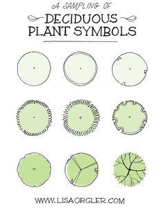 Drawing Plant Symbols Practice Sheet