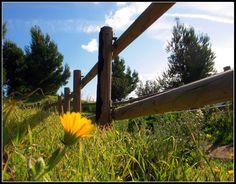 #Landscap  Dale a Me Gusta, Repinea y comparte, please!!