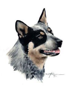 AUSTRALIAN CATTLE DOG Art Print Signed by Artist D by k9artgallery, $12.50