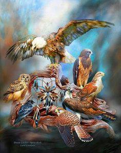 Dream Catcher ~ Spirit Birds ~ Carol Cavalaris kK