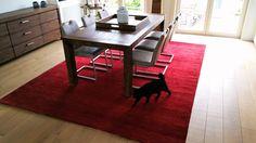 #rood #tapijt in een modern #interieur is een mooie #eyecatcher. zelf de kat is er weg van