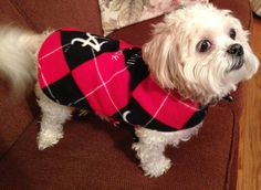 Dog Coat Fleece Alabama  Argyle  Black Red by RoseRidgeCreations, $24.99