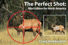 The Prefect Shot – Craig Boddington Shot Placement for Elk, Deer & Pronghorn