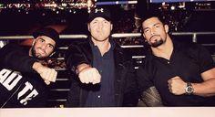 the shield Ew, Rollins