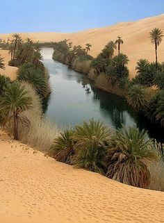 Ubari Lake, Sahara, Libya (by ladigue_99 desert photography)