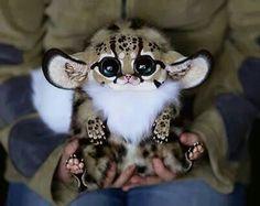an unusual animal with big ears