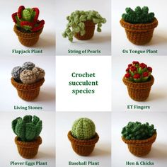 Realistic crocheted cacti and succulents - individual plants in small pots. $12.00, via Etsy.