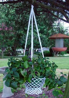Picture of Country Cottage Plant Hanger Pattern Easy Crochet Stitches, Crochet Patterns, Hanging Plants, Indoor Plants, Potted Plants, Crochet Plant Hanger, Plant Hangers, Easter Baskets To Make, Plant Crafts