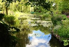 A great afternoon in Giverny, where Claude Monet lived for almost  forty-three years , from 1883 to 1926. The gardens and the house are quite like they were when the master of Impressionism used to live here. With a passion for gardening as well as for colours, he conceived both his flower garden and water garden as true works of art.   Walking through his house and gardens, you can still feel the atmosphere which reigned 100+ years ago. Beauty and harmony. Very moving.