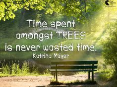 Time spent among TREES is never wasted time. ~ Katrina Mayer