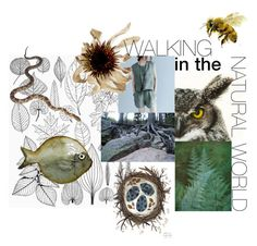 """""""walking in the natural world"""" by pgarmhausen ❤ liked on Polyvore featuring art, etsy, nature and giardino"""