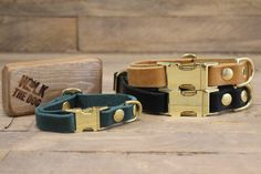 Clip collar ID address tube Custom leather collar Dog Dachshund Puppies, Funny Puppies, Small Sized Dogs, Dog House For Sale, Newfoundland Puppies, Hiking Dogs, Handmade Dog Collars, Dog Rooms, Leather Dog Collars