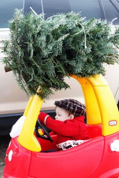 Out the way drivers, need to get home with this christmas-tree