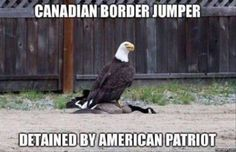Humor for patriotic Americans - funny picture of American eagle Funny Shit, Haha Funny, Funny Cute, Funny Jokes, Funny Stuff, Funny Things, Random Stuff, Top Funny, Happy Things