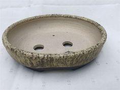 Pinecone Ceramics - Oval Pots Pinecone, Bonsai, Pots, Ceramics, Ceramica, Pineapple, Pottery, Ceramic Art, Cookware