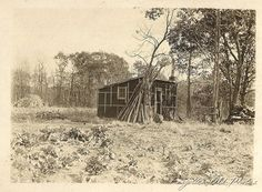 Tar paper shack with rifles leaning and lodge poles Dorset antiques 1