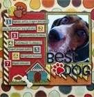 dog scrapbook page ideas - I need to finish Jacey & Kaiya's pet therapy scrapbook!