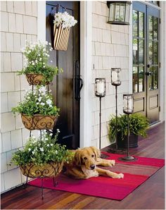 I'll take this exact front porch,dog included