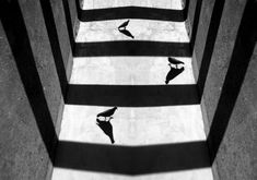 Black and White Shadow Photography by Alexei Bednij