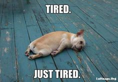Some days you're just plain tired...