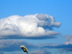 Dog cloud over Manhattan . August 17, 2014 (not photoshopped)