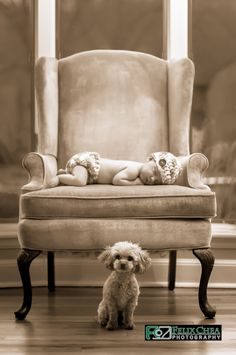 Newborn with puppy.